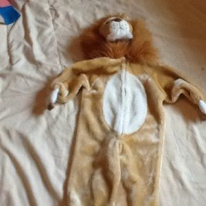 Other - Lion Costume